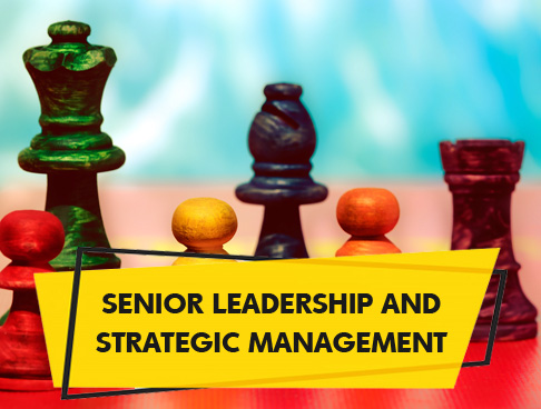 Senior Leadership and Strategic Management